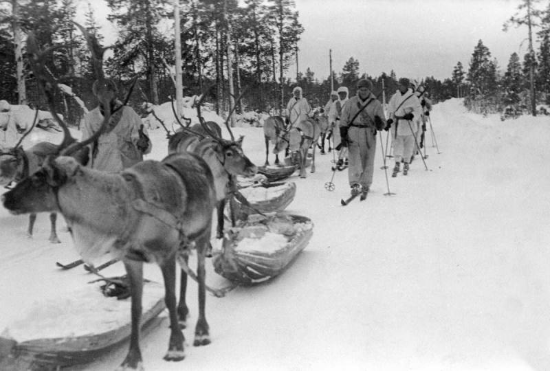 Зачем Финляндия напала на СССР?